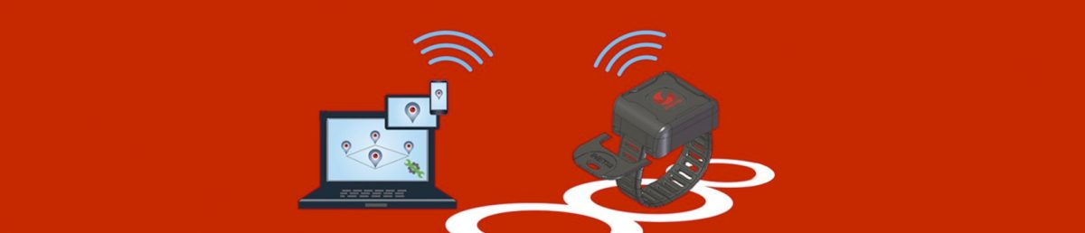 #IoT : Inetis lance Inetdétective